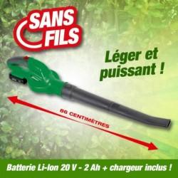 outiror-souffleur-r-bat20-batterie--41412190017.jpg
