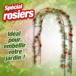 outiror-Arche-arc-rosier-126305190041.jpg