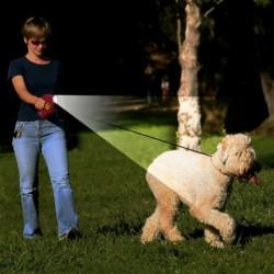 laisse pour chien retractable avec lumiere