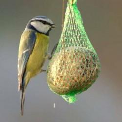 outiror-boules-de-graisse-pour-oiseaux-lot-de-6-61011170024-3.jpg