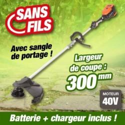 outiror-Coupe-bordure-Batterie-201201210012.jpg