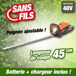 outiror-Taille-Haies-Batterie-201201210013.jpg