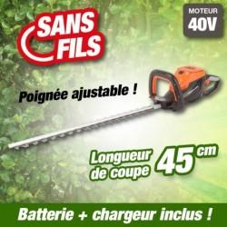 outiror-Taille-Haies-Batterie-201201210013.jpg