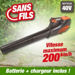 outiror-Souffleur-Axial-batterie-201201210015.jpg