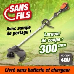 outiror-Coupe-bordure-Batterie-201201210016.jpg
