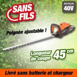 outiror-Taille-Haies-Batterie-201201210017.jpg