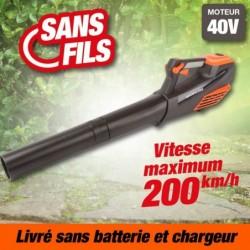 outiror-Souffleur-Axial-batterie-201201210019.jpg