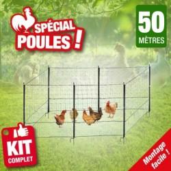 outiror-Filet-poules-longueur-50m-115809210006.jpg