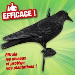outiror-corbeau-effaroucheur-33224-A