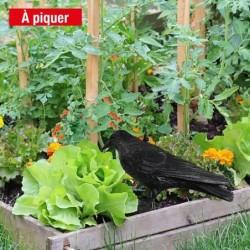 outiror-corbeau-effaroucheur-33224-B
