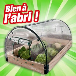 outiror : serre de jardin avec chassis