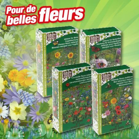 outiror - jacheres fleuries mix de graines 4 sortes