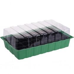 outiror - Kit de germination 35,5*21 cm