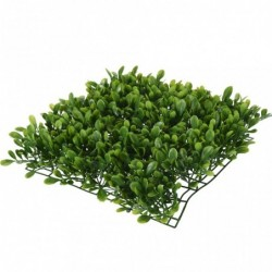outiror-plant-vert-carre-245x245x60mm-124001190097-2