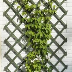 outiror-treillis-extensible-en-bois-colore-vert-50x150cm-141301190068-3