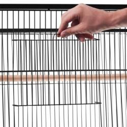 outiror-Cage-oiseaux-116906190001-5