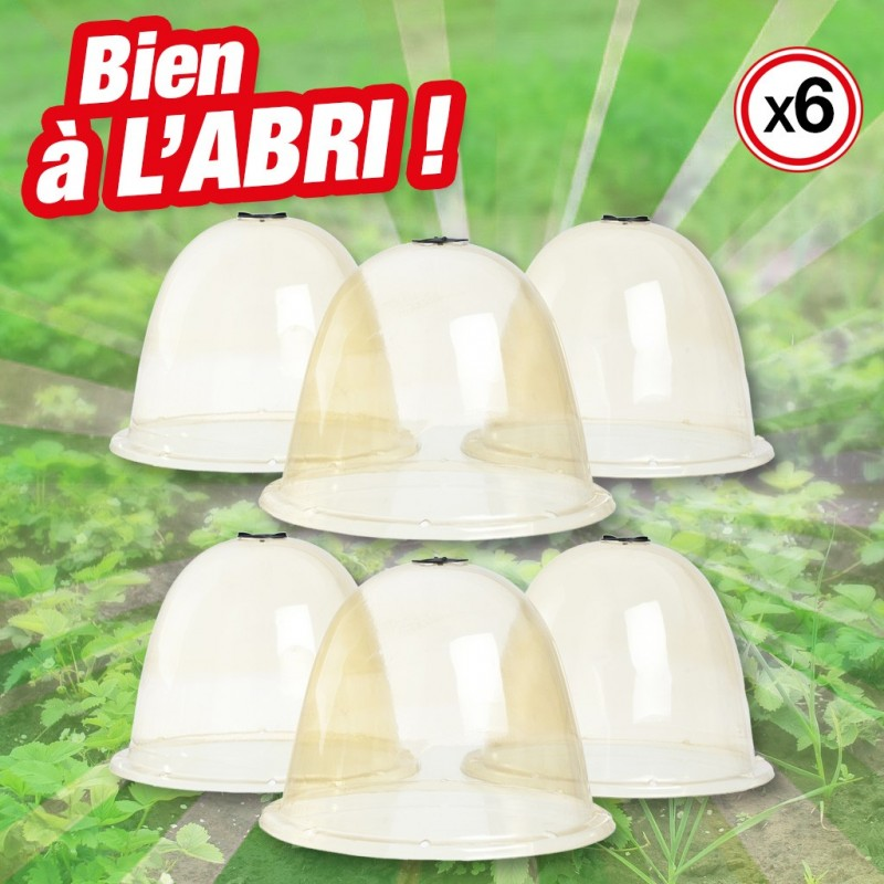outiror-Lot-cloches-salades-116511190020