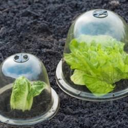 outiror-Lot-cloches-salades-116511190020-3
